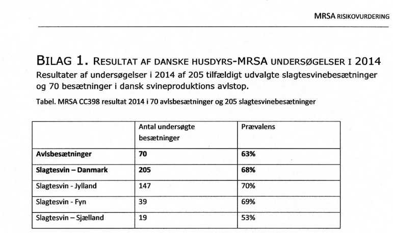 Undersøgelsen fra 2014 viste 68 % MRSA-inficerede svine-besætninger.